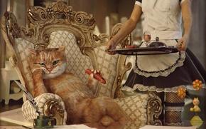 Обои обед, девушка, ситуация, сосиска, прислуга, кресло, кот
