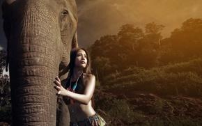 Картинка девушка, свет, слон