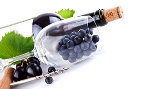 Картинка макро, бутылка, пробка, бокал, вино, штопор, листья, виноград