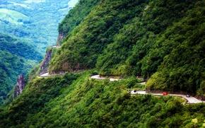 Картинка дорога, лес, горы, скалы, Бразилия, Serra do Rio do Rastro