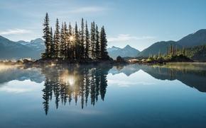 Картинка лес, деревья, горы, озеро, утро, дымка