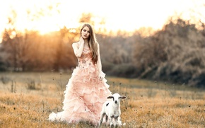 Картинка девушка, ягнёнок, Alessandro Di Cicco, Sweet girl with a sweet lamb