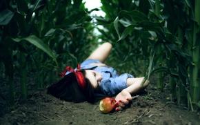 Обои поле, девушка, фон, земля, обои, яблоко