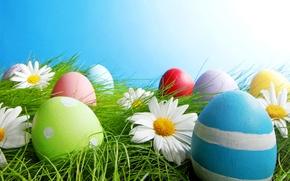 Картинка небо, трава, свет, цветы, яйца, весна, пасха