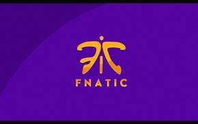 Картинка logo, csgo, fnatic