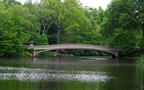 Картинка Нью Йорк, Bridge, New York, Центральный парк, Мостик, Central park