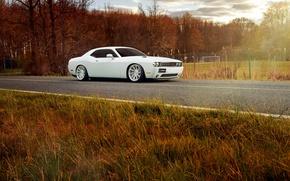 Картинка Dodge, Challenger, white, Vossen Wheels