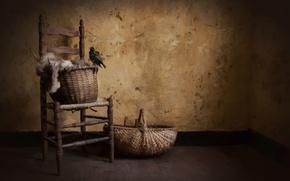 Картинка птица, арт, корзины, rural style