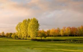 Картинка осень, небо, трава, облака, деревья, пруд, парк, мостик