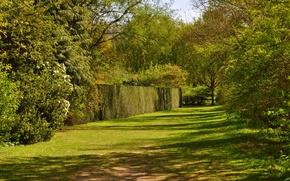 Картинка зелень, осень, деревья, забор, Nature, кусты, trees, autumn