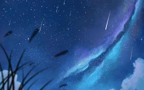 Картинка небо, девушка, звезды, облака, ночь, аниме, арт, пара, парень, млечный путь, двое, dias mardianto, donsaid