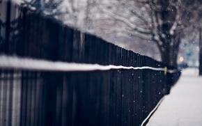 Картинка зима, макро, снег, деревья, снежинки, природа, забор, ограда, прутья, железные