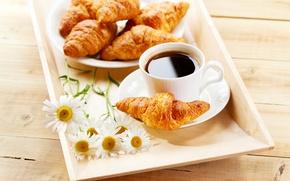 Картинка цветы, кофе, ромашки, завтрак, круассаны