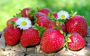 Обои лето, ягоды, клубника