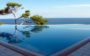 Картинка море, дерево, бассейн