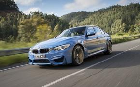 Картинка дорога, car, машина, авто, деревья, горы, BMW, синяя, 2015