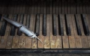 Картинка музыка, перо, пианино