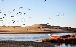 Картинка песок, вода, птицы, река, лодка, дюны, мель