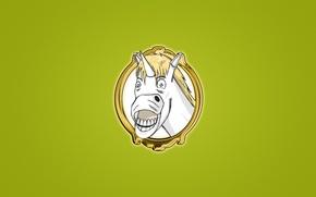 Обои улыбка, лошадь, портрет, минимализм, белая, Единорог, unicorn, смешная морда, светлый зеленый фон
