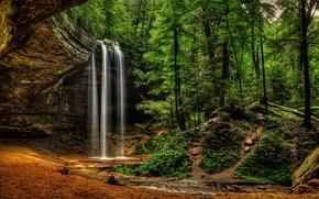 Картинка лес, водопад, Logan, Огайо, Ohio, Hocking Hills State Park, Национальный парк Хокинг Хиллз, Ash Cave …