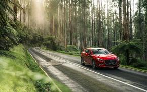 Картинка Красный, Природа, Дорога, Лес, Машина, Mazda, Car, Автомобиль, 2016, Металлик, SP25, Astina Hatchback