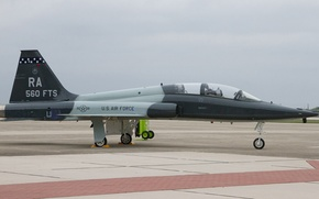 Картинка aircraft, Northrop, Texas, Talon, 50th anniversary, Randolph Air Force Base, T-38