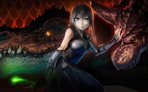Картинка девушка, драконы, фэнтези, арт, akio-bako