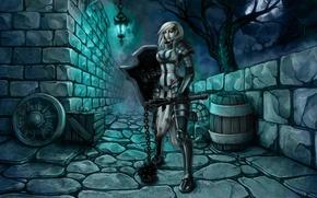 Картинка armor, крестоносец, Diablo III: Reaper of Souls, morgenstern
