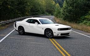Картинка Dodge, Challenger, white, road