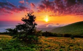 Картинка небо, солнце, облака, лучи, горы, холмы, утро, США, Северная Каролина