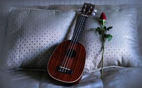 Картинка rose, ukulele, pillows, Love Song