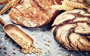 Картинка пшеница, зерна, хлеб, fresh, выпечка, булка, мука, bread