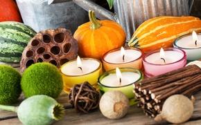 Картинка осень, украшения, маки, свечи, арбуз, тыква, прутья, декор, подсвечники