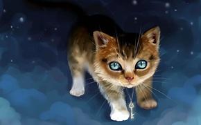 Картинка небо, ночь, котенок, ключ, IPPO-Lita