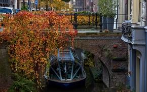 Картинка дорога, осень, листья, деревья, машины, мост, город, улица, дома, желтые, катер, канал, Нидерланды, кусты, Utrecht, …