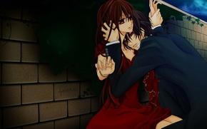 Обои аниме, vampire knight, рыцарь-вампир, yuki, юки, канаме
