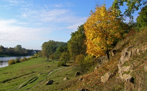 Обои деревья, берег, Осень