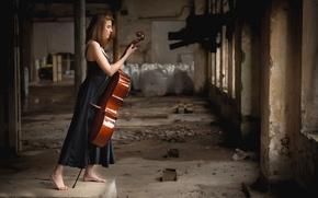 Картинка виолончель, музыкальный инструмент, Giada Gheri