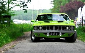 Картинка вид спереди, muscle car, барракуда, салатовый, 1971, плимут, Barracuda, Plymouth, green, мускул кар