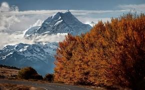 Картинка дорога, осень, снег, деревья, горы, вершина