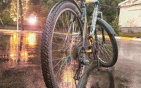 Картинка асфальт, солнце, природа, мокрый, отдых, Велосипед, sun
