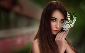 Картинка цветок, взгляд, портрет, Flower, Ece