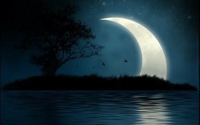 Картинка вода, ночь, остров, Луна