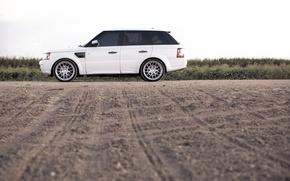 Картинка белый, Rover, Range