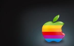 Обои цвет, яблоко, apple, логотип