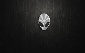Картинка silver, logo, alienware