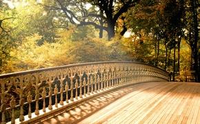 Обои Деревья, Мост, Осень