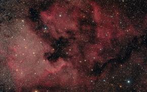 Картинка туманность, Лебедь, Северная Америка, в созвездии, эмиссионная