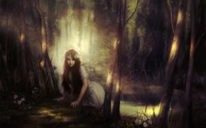 Картинка лес, девушка, свет, цветы, тень, Арт, водоем
