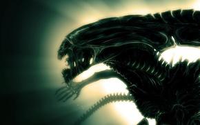 Картинка свет, монстр, чужой, инопланетянин